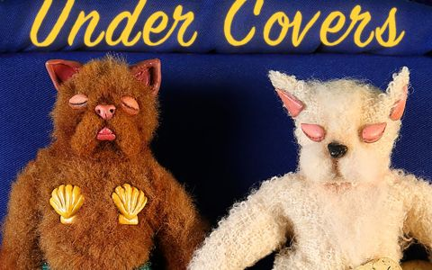 Afiche película Under Covers