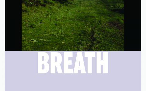 Afiche película Breath